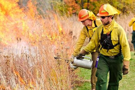 burning at Biocore Prairie, UW Lakeshore Preserve