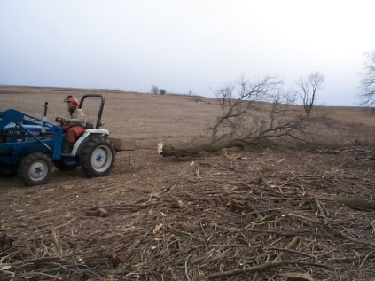 clearing treelines from the prairie