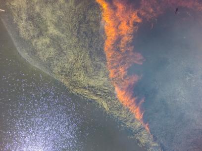 Fire approaching water